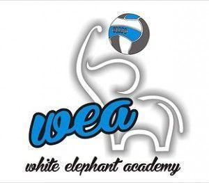 Logo WEA.00